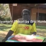 niyamarri-pukurl-by-eric-hunter
